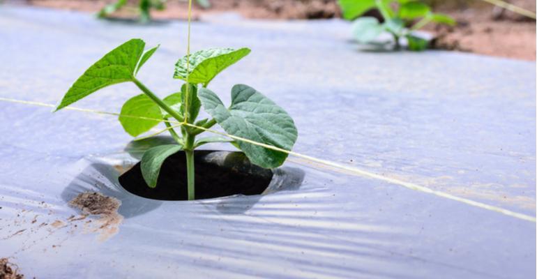 usos do plástico no agronegócio